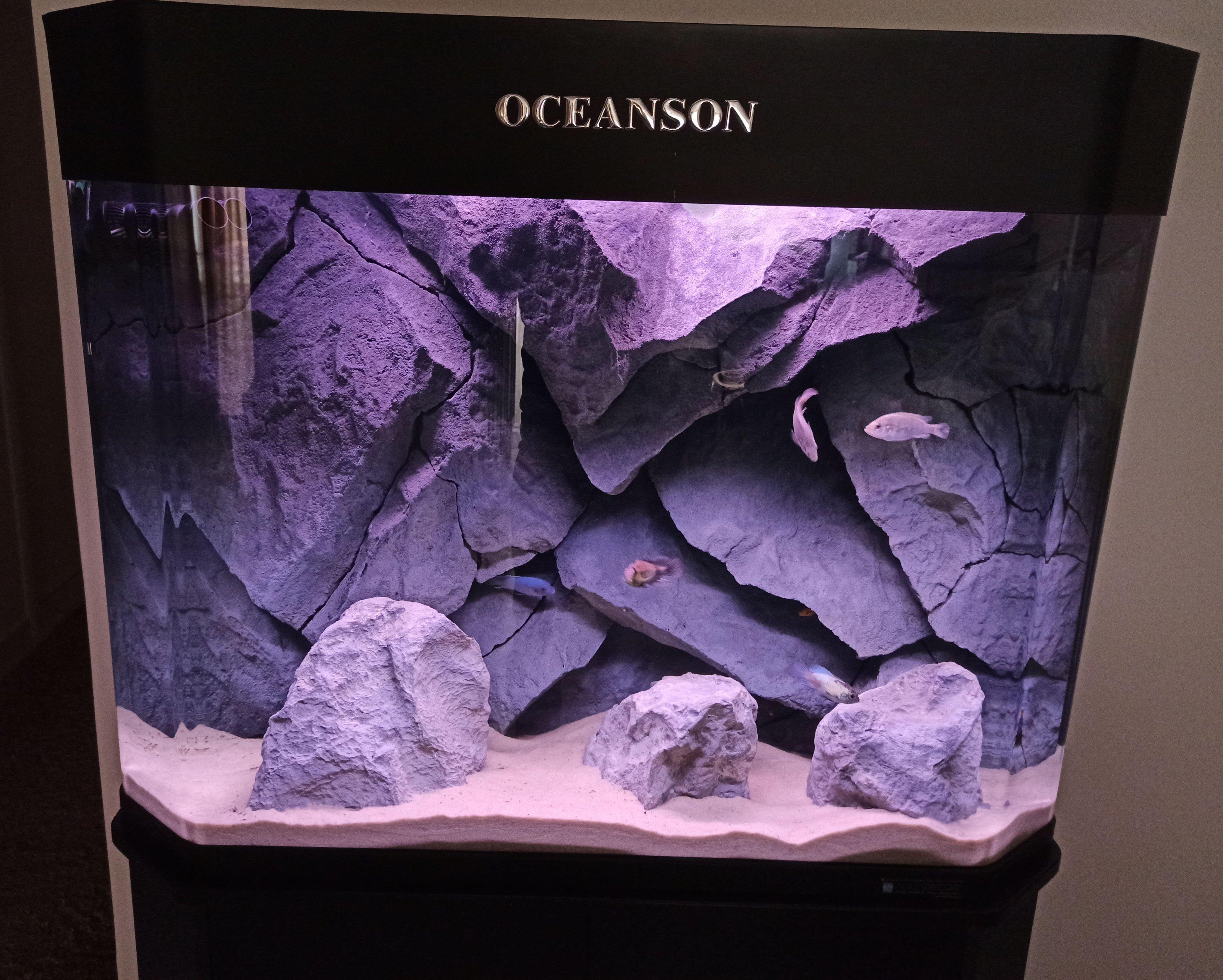dimitris aquarium-5.jpg