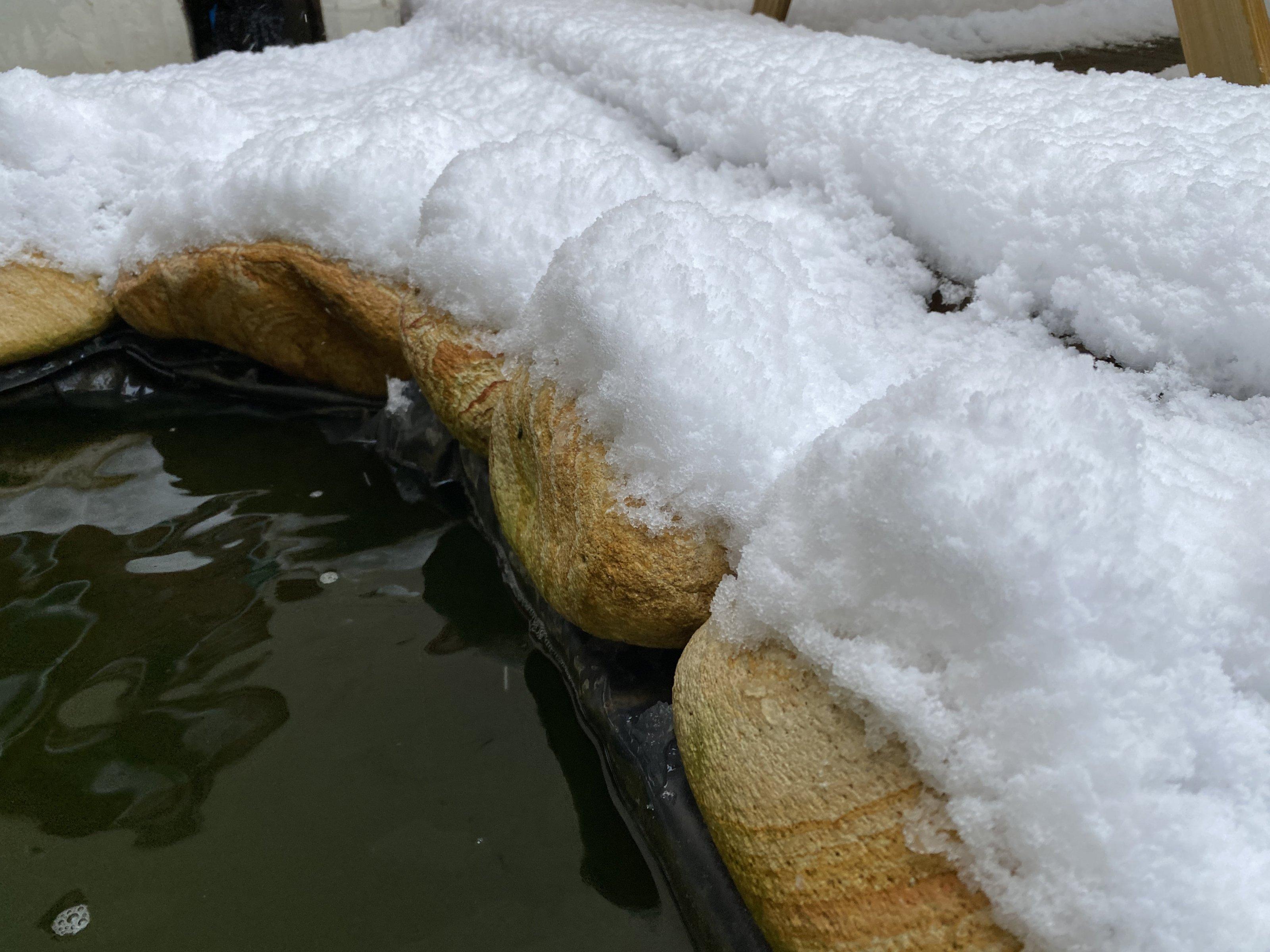 Χιονισμένη λιμνούλα 2