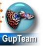 GupTeam